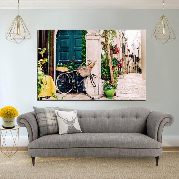אופניים איטלקיים קנבס יחיד
