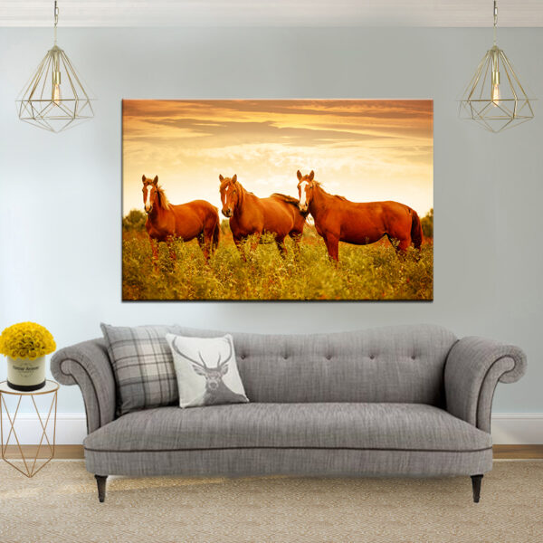 סוסי אדמה קנבס יחיד