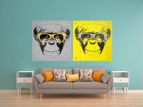 קופים מגניבים זכוכית זוג